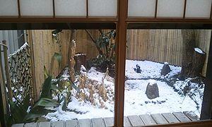 2012-01-24 08_09_47 yukimi.jpg
