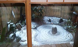 2012-02-29 07_06_52yuki.jpg