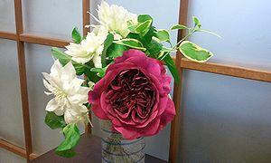 2012-05-03 21_09_40 bara2.jpg