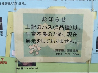 IMG_0488.JPG