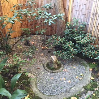 秋の庭5.JPG