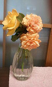 2011-10-25 09_00_01bara.jpg