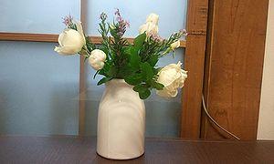 2011-11-08 18_11_16bara.jpg