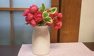 2011-11-25 16_55_24maza-zudei.jpg
