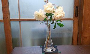 2011-12-09 08_02_32bara.jpg