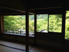 葵祭を見てから、洛北の紅葉の名所へ。予想通り素晴らしい青もみじ(^_^)人が居ないのもイイ