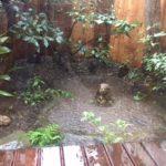 小唄 「夏の雨」