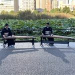 早朝、不忍の池で琴の生演奏⭐️